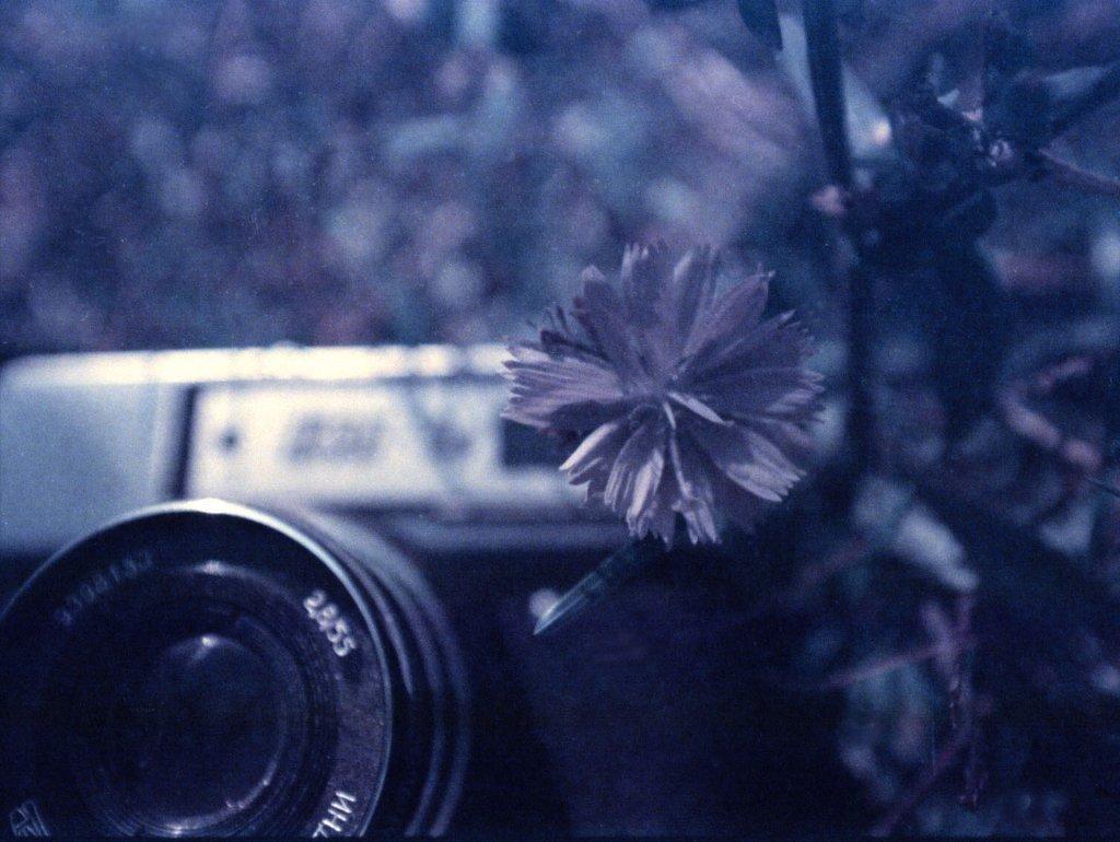 Moonstruck 35mm
